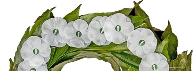 White Poppy Wreath Laying